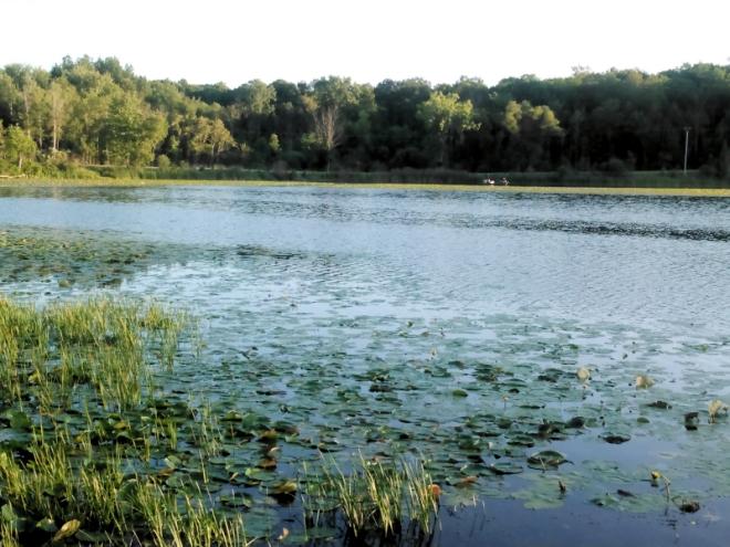 nester lake.jpg
